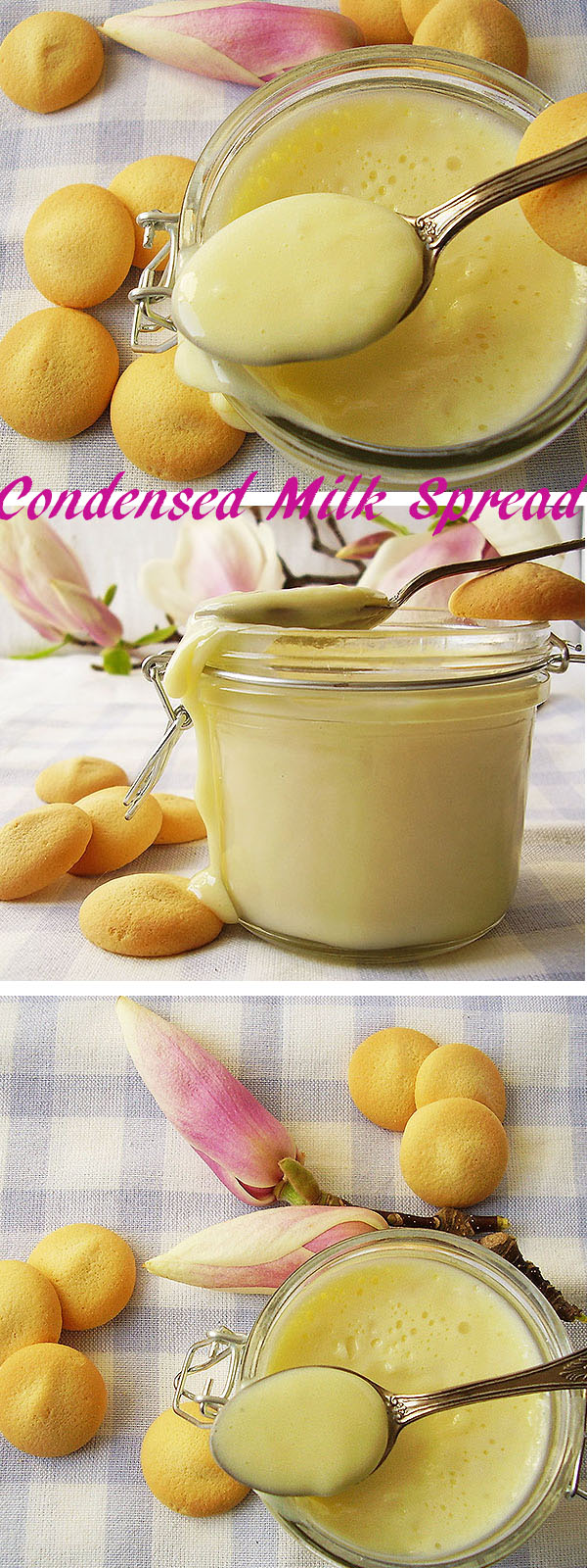 Condensed Milk Spread prepared this way is the most versatile homemade desserts' ingredient ever; even more: it can be a dessert by itself. Check it out ! Whitechocoliscious !