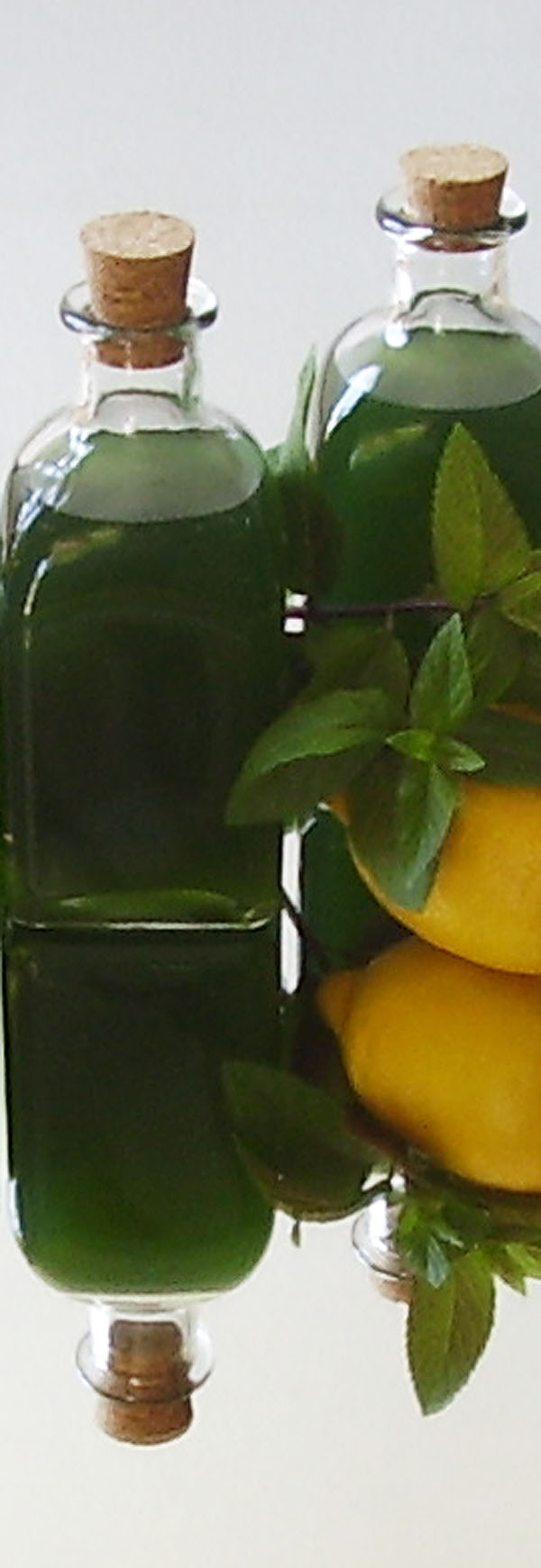 Mint Syrup Quick Version Recipe: There is no substitute for its wonderful flavor and aroma; fortunately, it's easy to make your own!