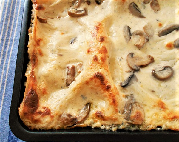 Mushroom and Cheese Lasagna: Garfield would love it, I'm sure !