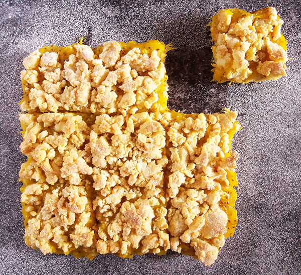 Mango Chia bars : juicy mango with healthy kick.