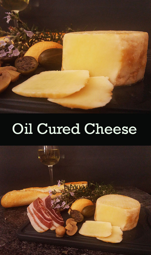 Oil Cured Cheese : Fancy retro and simply cured cheese for your charcuterie board.